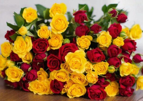 К чему дарят жёлтые розы женщине (девушке) и что они значат на языке цветов